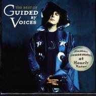 """My Kind of Soldier"" by Guided By Voices (Video)"